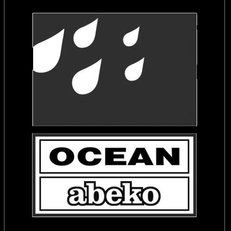 Ocean logo - kunde ved Fiks IT